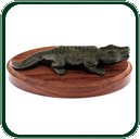 Much more appealing than the real thing, the unique natural markings of the black Jade give this crocodile an almost realistic appearance.